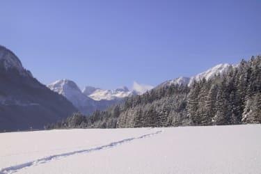 Dachstein mit Spur im Schnee