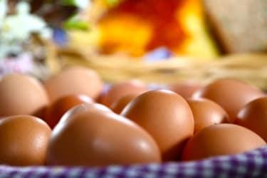 Eier von unseren glücklichen, freilaufenden Hühnern