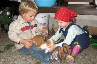 Kinder mit Katzenbabys