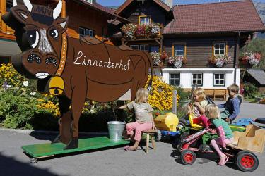 Urlaub am Bauernhof - Kinder