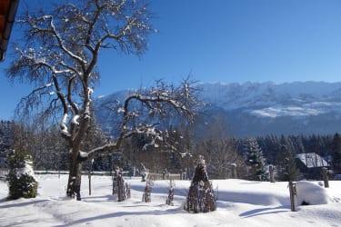Terassenausblick im Winter
