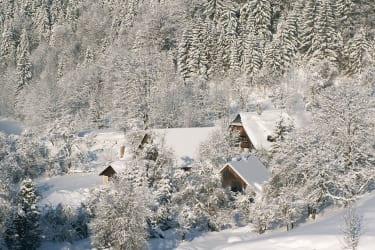Der Moarhof