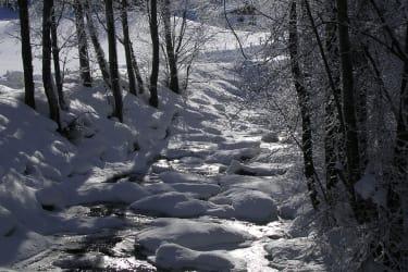 kalte Winterszeit