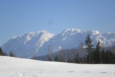 Grimming bei Winterwanderung Hochmoor Ödensee