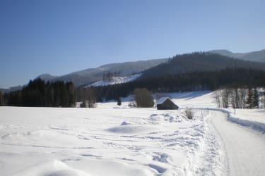 Winterwanderung Hochmoor Ödensee