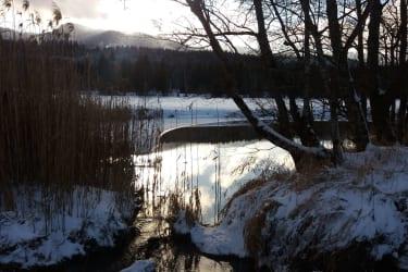 Herrliche Winterlandschaft - hier beim Obersdorfer Rundweg