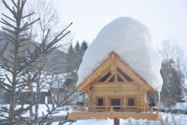 Winter in Kainisch