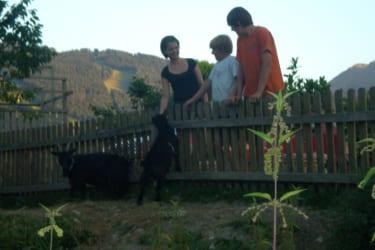 Besuch bei den Ziegen