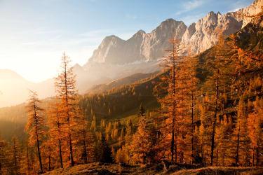 Herbst auf Brandalm