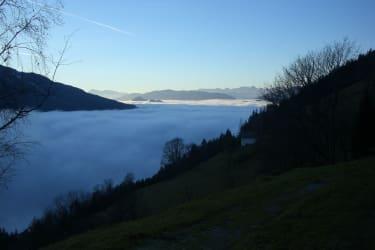 Nebelmeer im Herbst