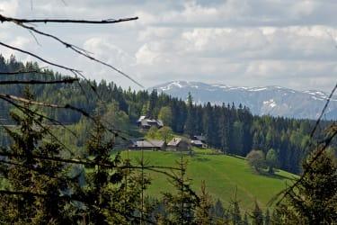 Roseggers Geburtshaus mit der Hohen Veitsch im Hintergrund
