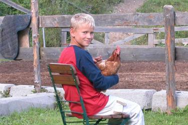 Kilian und das Huhn