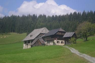 Hütte mit Zufahrt