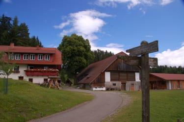 ZUfahrt zu unserem Steinerhof