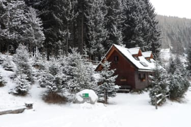 Verschneide Winterlandschaft