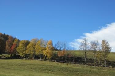 Herbst-Umgebung