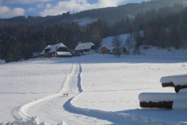 Schlittenbahn