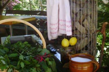Zutaten fürn Kräutersaft