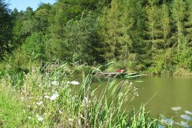 Naturbadeteich im Sommer