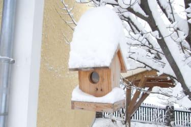 Winter ist's