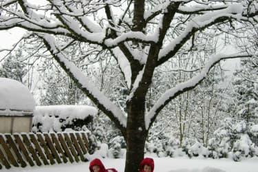 Schneeburg bauen