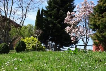 Dieser Garten !!!
