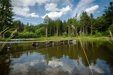 Unser Fisch- und Schwimmteich ist in 10 min zu Fuß erreichbar