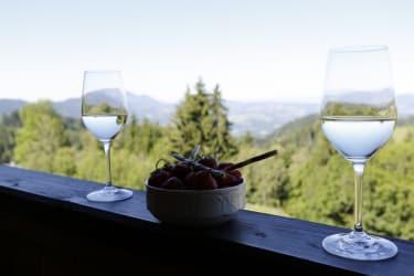 mit einem Glas Wein die Aussicht geniessen