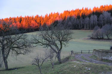 Stimmungsvoller Sonnenuntergang im Winter