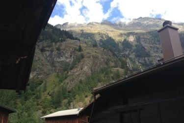 Balkon Aussicht Malve