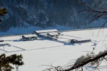 Alpenappart Rimlhof