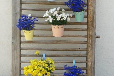 Blumenparadies
