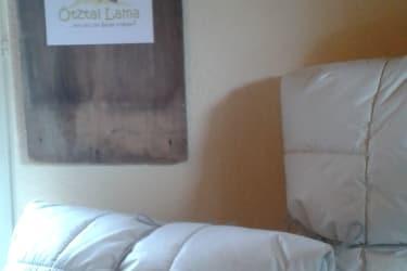 Decke & Kissen aus Lamawolle