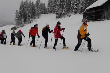 Schneeschuhwandern macht auch bei Schneefall Spaß