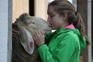 Kind mit Schaf