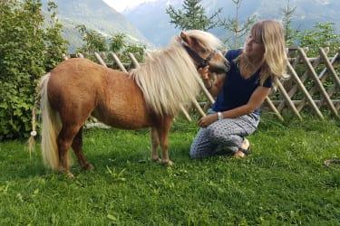 Mini Pony Malea