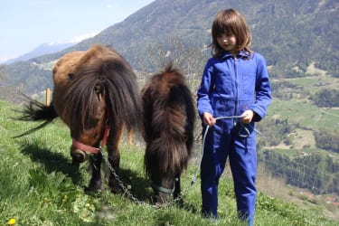 Shetland Ponys (MARIE, KATY) mit Ronja