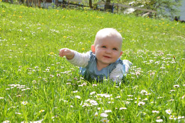 Bauernhof erleben auch für die Kleinsten