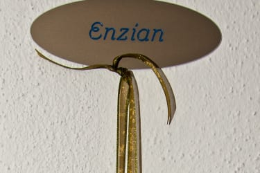 Türschild Enzian