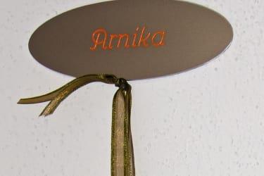Türschild Arnika