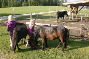Ponyreiten mit Luna und Max