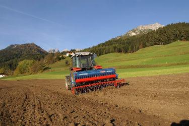 Winter rye growing on the fields of the Kassnhof