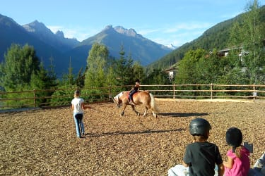 Our riding ring enjoys an idyllic location! Ideal for riding at any time of year thanks to its chipped wood ground