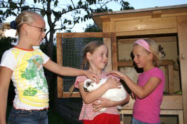 Viel Freude haben unsere Gästekinder mit unseren Tieren