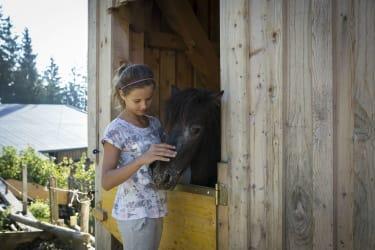 mit Pony
