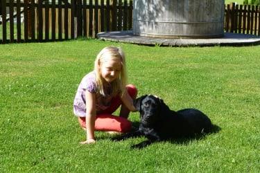 Hund Bella vom Feriengut Oberhabach