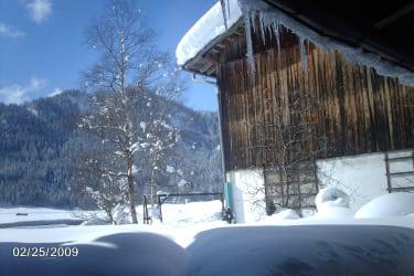 Stallansicht vom BIO-Bauernhof Hasenberg im WInter