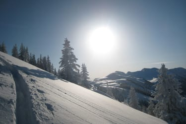 Winterpanorama mit den Tourenschi