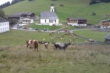 Dorf Thierbach