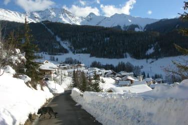 Spazierweg oberhalb vom Naturerlebnis Lärchenhof